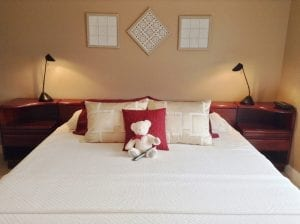 panorama-room-king-size-bed-with-teddy