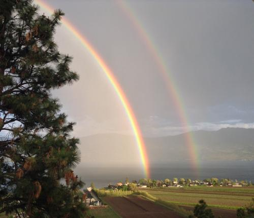 View of Double Rainbow